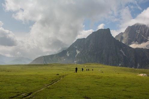 52. Meadows besides Kishansar lake